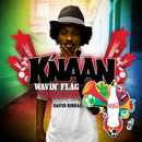 Wavin' Flag (Coca-Cola® Spanish Celebration Mix)/K'NAAN, David Bisbal