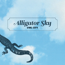 Alligator Sky/Owl City