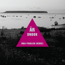 Inga problem (Remix) (feat. Petter, Veronica Maggio)/Snook