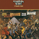 I Want You (Reissue)/Marvin Gaye & SNBRN