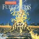 Fuego Gris/Luis Alberto Spinetta