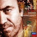 チャイコフスキー:交響曲第6番<悲愴>/Wiener Philharmoniker, Valery Gergiev