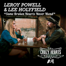 Some Broken Hearts Never Mend/Leroy Powell, Lee Holyfield