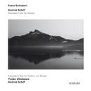 シューベルト:<幻想曲>/András Schiff, Yuuko Shiokawa