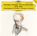 R.シュトラウス:交響詩<英雄の生涯><ドン・ファン>/Staatskapelle Dresden, Giuseppe Sinopoli