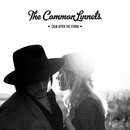 Calm After The Storm/The Common Linnets