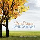 These Dreams: Intimate Piano Moments/David Osborne