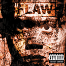 Through The Eyes(Explicit Version)/Flaw