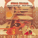 Fulfillingness' First Finale/スティーヴィー・ワンダー