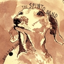 Did I Tell You/The Spinto Band