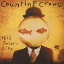This Desert Life/Counting Crows