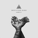 Cosmos II/Mountain Bird