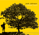 In Between Dreams/Jack Johnson and Friends