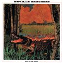 Fiyo On The Bayou/The Neville Brothers