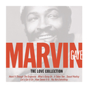 Love Songs/MARVIN GAYE