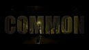 Kingdom (Full Length Version) (feat. Vince Staples)/Common