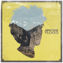 Flood/Jeremy Fisher
