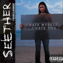 Disclaimer/Seether