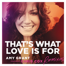 That's What Love Is For (Remixes) (feat. Chris Cox)/Amy Grant