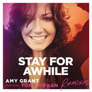 Stay For Awhile (Remixes) (feat. Tony Moran)/Amy Grant