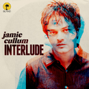 Don't Let Me Be Misunderstood (feat. Gregory Porter)/Jamie Cullum