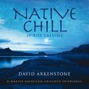 Native Chill/David Arkenstone