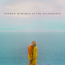 Andrew McMahon In The Wilderness/Andrew McMahon in the Wilderness