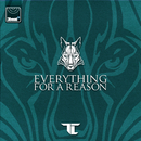 Everything For A Reason/TC