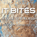 Whole New World (The Virgin Albums 1986-1991)/It Bites