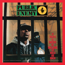 It Takes A Nation Of Millions To Hold Us Back (Deluxe Edition)/Public Enemy