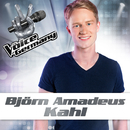 Einmal sehen wir uns wieder (From The Voice Of Germany)/Björn Amadeus Kahl
