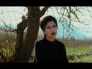 Gaziantep Yolunda/Sukriye Tutkun