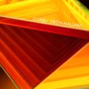 Neon Hallway/Corbu