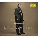 ブラームス:ピアノ小品集/Kun-Woo Paik