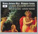 バッハ:世俗カンタータ集/Dorothea Röschmann, Axel Köhler, Christoph Genz, Musica Antiqua Köln, Reinhard Goebel