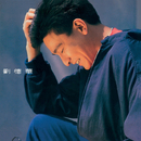 Liu De Hua/Andy Lau