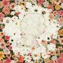 Flowerwall/米津玄師