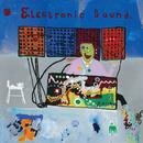 Electronic Sound/George Harrison