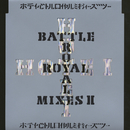 BATTLE ROYAL MIXES II/布袋寅泰