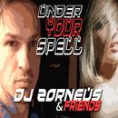 Under Your Spell/DJ Zorneus, Friends