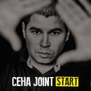 Start/Ceha Joint