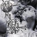 Release The Stars/Rufus Wainwright