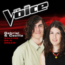 Walking On A Dream (The Voice 2014 Performance)/Gabriel & Cecilia