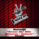 Amor De Mis Amores / Volare - The Voice 3/Kendji Girac