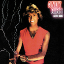 AFTER DARK/ANDY GIBB/Andy Gibb