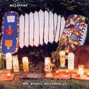 The Gospel Accordion II/Mulehead