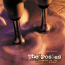 Frosting On The Beater/The Posies