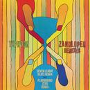 Zandloper (Remixes) (feat. Rico, Andre Manuel)/Typhoon