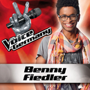 Wenn Worte meine Sprache wären (From The Voice Of Germany)/Benny Fiedler