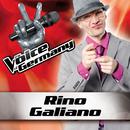 Über sieben Brücken musst du gehen (From The Voice Of Germany)/Rino Galiano